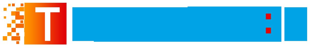 TMuhasebe – Web Tabanlı Muhasebe ve Teknik Servis Yazılımı
